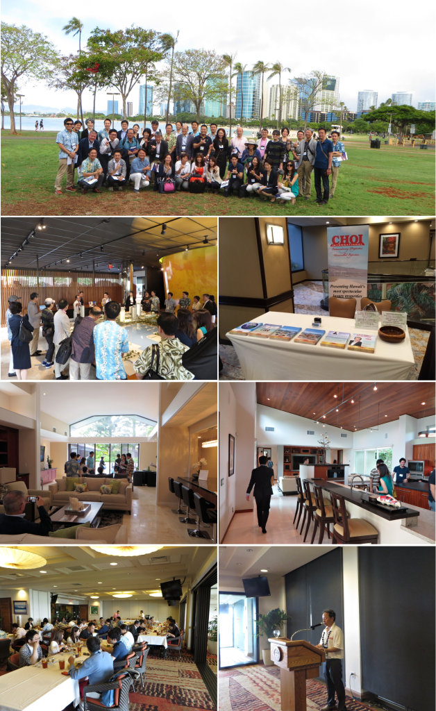 Choi website_collage
